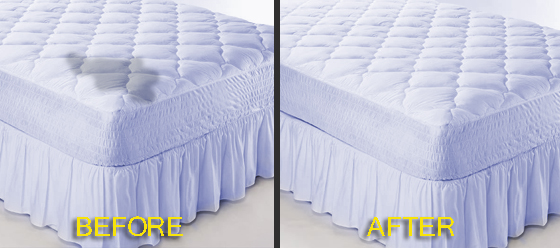 Cleaning Mattress Mount Evelyn 3796