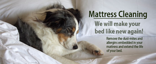 Mattress Cleaning Lethbridge