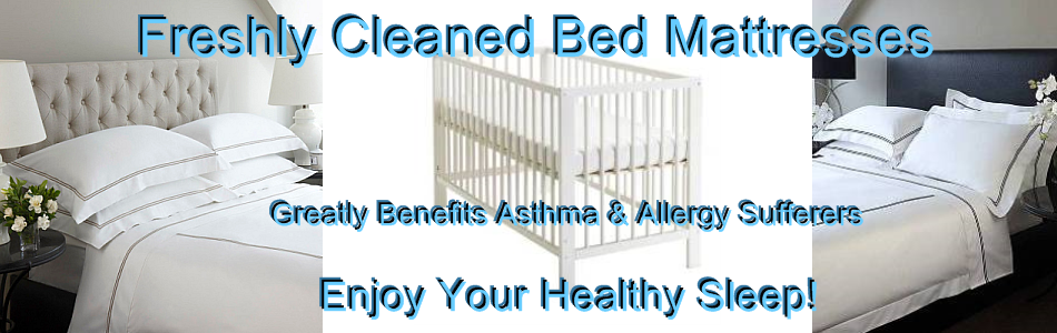 Cleaned Bed Mattress Albion 3020