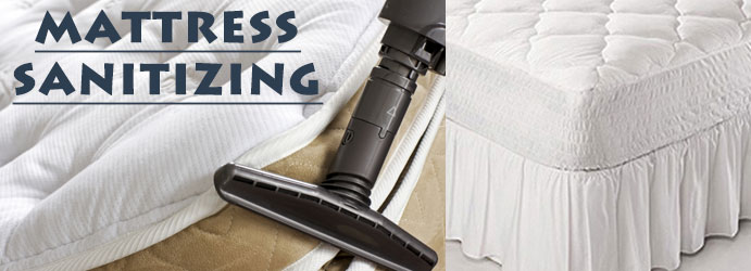 Professional Mattress Sanitizing Services in Gillman