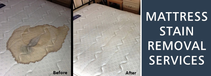 Mattress Stain Removal Services in Lamington