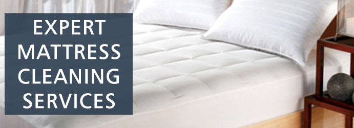 Mattress Cleaning Annerley