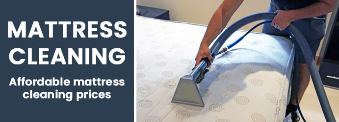 Mattress Cleaning Officer