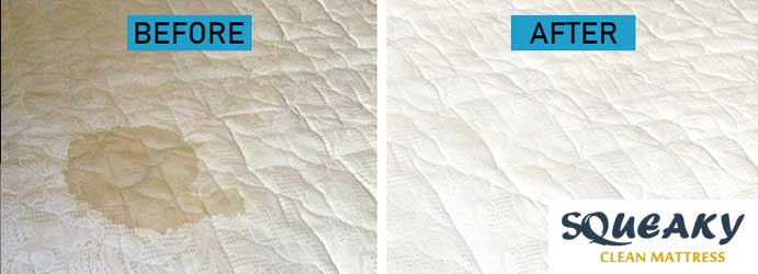 Mattress Stain Removal Deakin