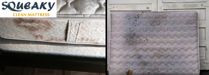 Mattress Mould Removal Edinburgh
