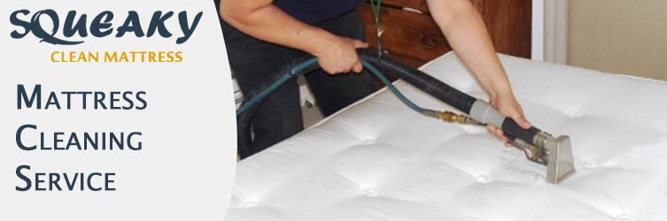 Mattress Cleaning Grasstree Hill